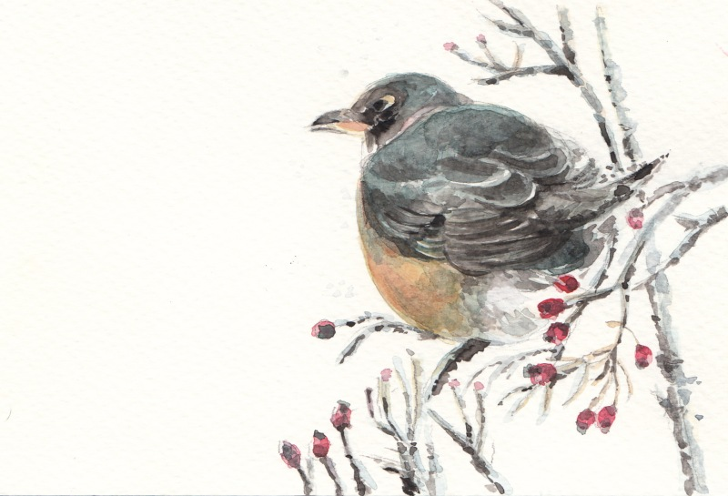 My first time to paint a bird in watercolours on a Strathmore postcard!